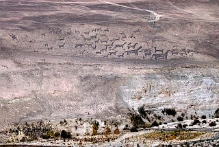 Illustration for article titled Is the Dakar Rally destroying the incredible geoglyphs of Chile?