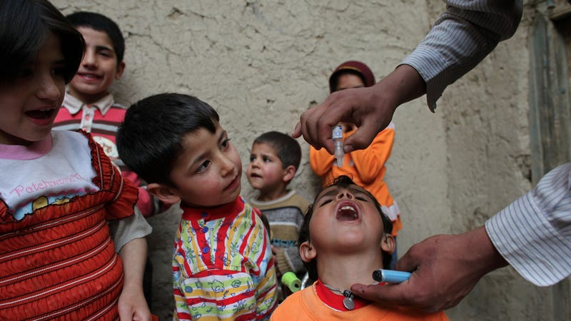Illustration for article titled Polio Has Been Declared an International Public Health Emergency
