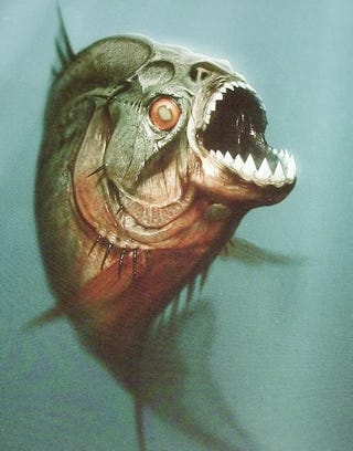 Illustration for article titled Gory Piranha 3D Trailer Is Blood Splattered In All The Right Places