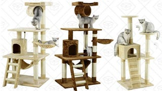 Gold Box con torres para gatos | $35-$42 | Amazon