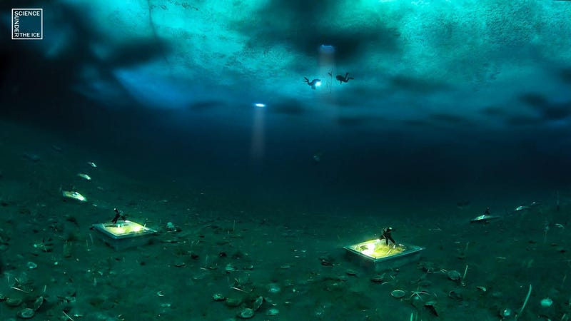 Scientists dive beneath Antarctica's sea ice and conduct a chamber experiment on the ocean floor. Photo Courtesy Science Under the Ice