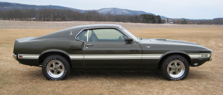 Illustration for article titled '69 Shelby GT500