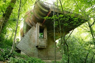 Future Tree Houses in the future, let's all live in treehouses just like 'the