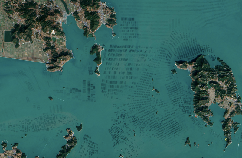 Illustration for article titled Beautiful NASA satellite photos reveal South Korea's seaweed farms