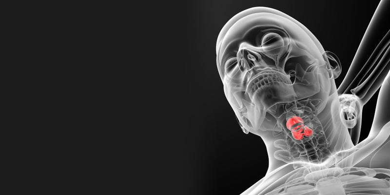 Illustration for article titled First-Ever Working Vocal Cords Grown in a Lab