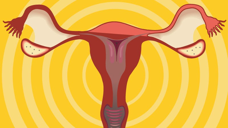 Illustration for article titled Legislators Got You Down? Cheer Up With Uterus-centric Stuff from Etsy