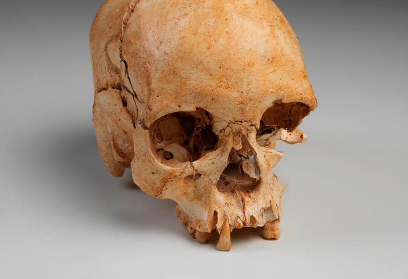 Cráneo de Luzía, el esqueleto más antiguo encontrado en las Américas