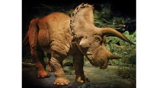Illustration for article titled Scare Children With This Ownable Animatronic Triceratops