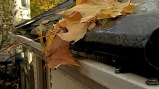 Illustration for article titled Prevent Leaves from Clogging Your Gutters With These Quick Fixes