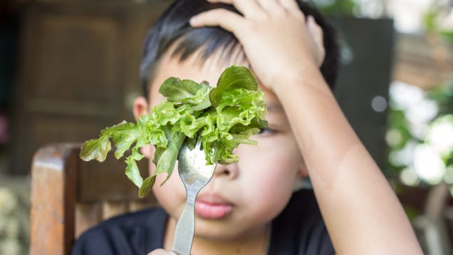 Stop Calling Kids  Picky Eaters