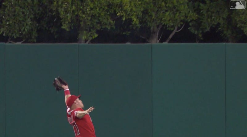 Illustration for article titled Mike Trout Extends On-Base Streak, Makes Amazing Catch As Angels Lose Yet Again