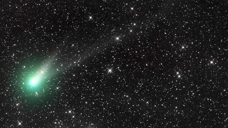 Illustration for article titled La última oportunidad de ver al cometa Catalina antes de que el Sol lo expulse del sistema