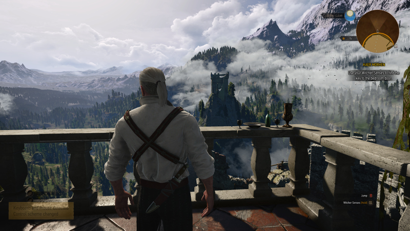 Illustration for article titled I'm Starting The Witcher 3 all over again...again.