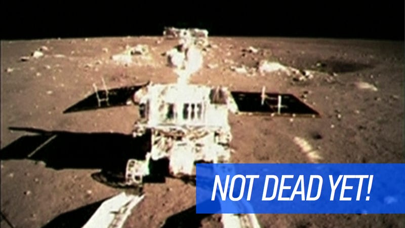 Illustration for article titled China's Sad, Dying Lunar Rover Isn't Going Down Without A Fight