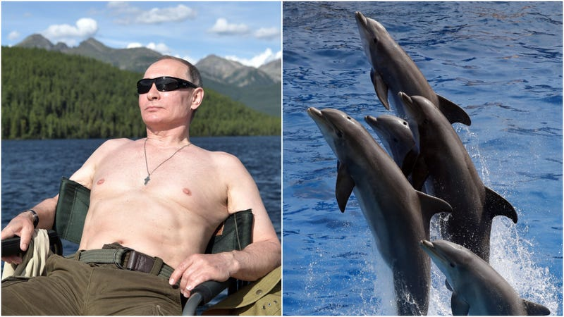 Illustration for article titled There is a beer named Shirtless Putin Nuzzling With Dolphins