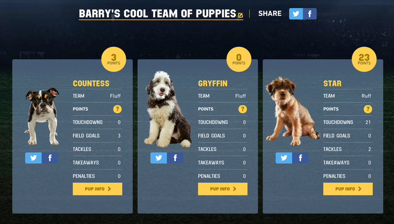 Illustration for article titled Hey How'd Your Fantasy Puppy Bowl Team Do? Mine Was Mostly Useless Garbage Dogs.