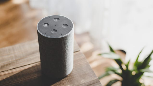 You Should Mute Your Smart Speaker s Mic More Often