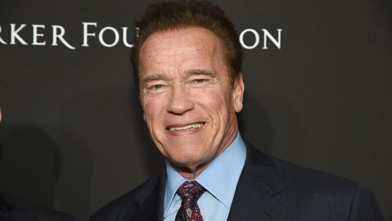 Illustration for article titled Arnold Schwarzenegger Isn't Pressing Charges Against the Guy Who Dropkicked Him