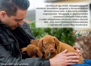Illustration for article titled A Jobbik nem is cuki, csak úgy tesz, hogy szeressék őt a nagymamák!
