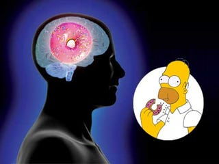 Illustration for article titled A Morning Donut Could Improve Your Memory and Ability to Concentrate