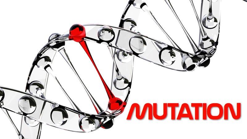 Nice 10 Unusual Genetic Mutations In Humans Good Ideas