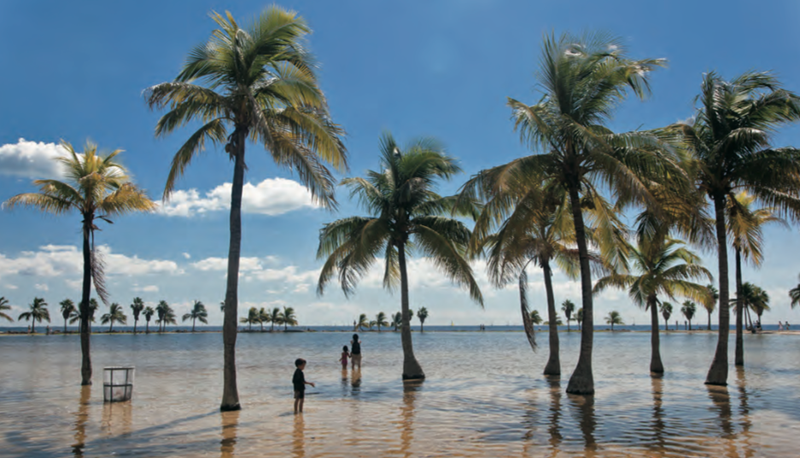 A municipal park in Coral Gables, Florida is underwater at high tide. Image by QT Luong/terragelleria.com