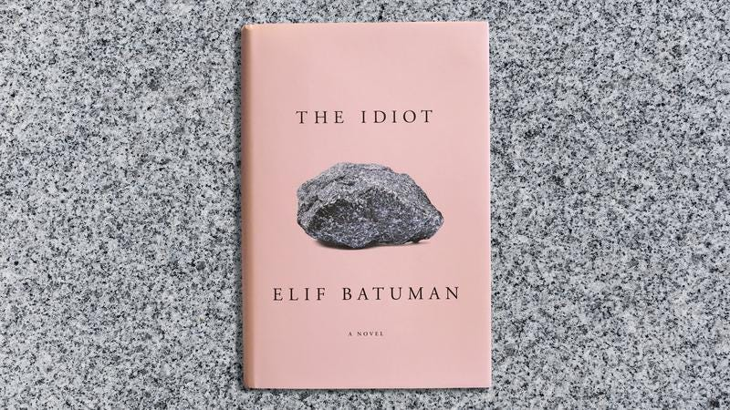 The Idiot tells an exceedingly charming story about idiots in college
