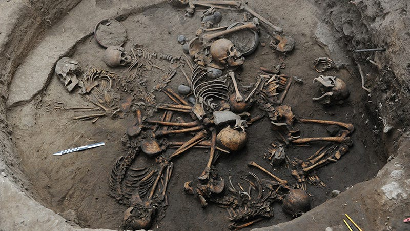 The 10 skeletons were arranged in a spiral pattern, suggesting a ritualistic practice. (Image: Mauricio Marat/National Institute of Anthropology and History (INAH))
