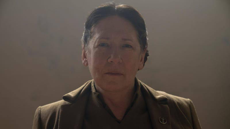 Ann Dowd stars at Aunt Lydia in The Handmaid's Tale, a character who becomes a protagonist in the sequel book.