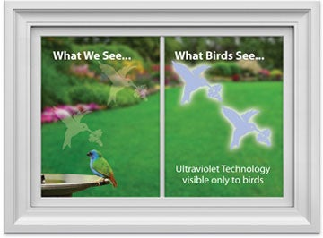 Stop Birds From Flying Into Your Windows With UV Decals - Window stickers to deter birds