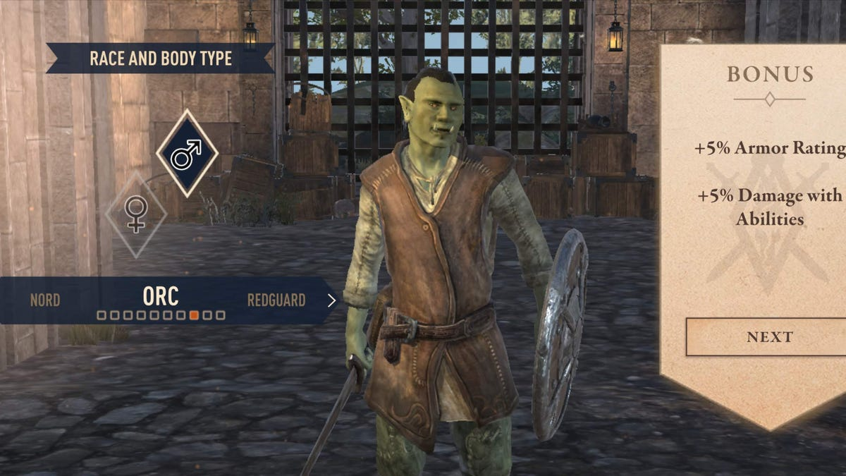 The Elder Scrolls: Blades Is An Impressive Mobile Game With