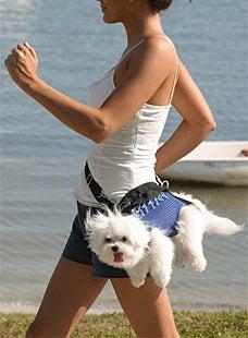 Dog Walking Fanny Pack