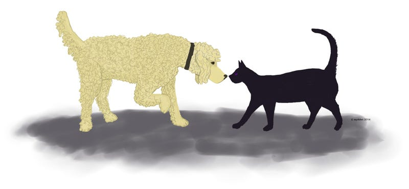 Illustration for article titled Pounce and Achoo