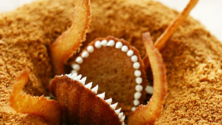 Illustration for article titled Sarlacc Bundt Cake might just be the best Star Wars cake idea