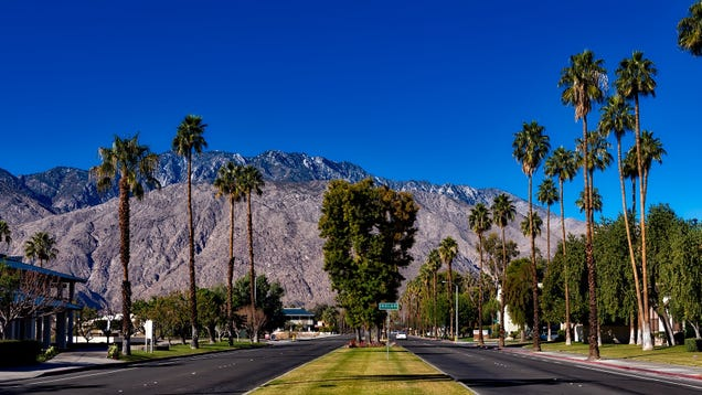 The Best Palm Springs Travel Tips From Our Readers