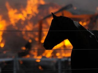 Illustration for article titled Barn Burning