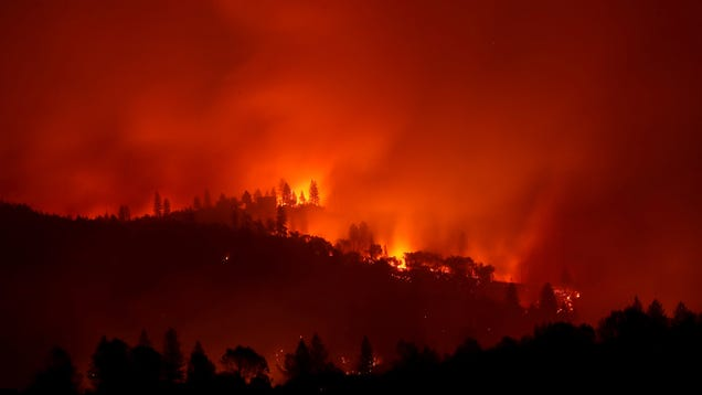 PG&E Pleads Guilty to Manslaughter for Camp Fire Deaths