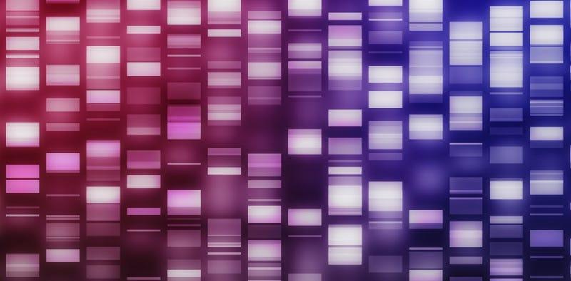 Illustration for article titled Logran almacenar datos digitales en cadenas de ADN artificial