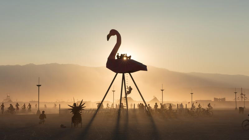 Illustration for article titled You Can Livestream Burning Man Now, Apparently