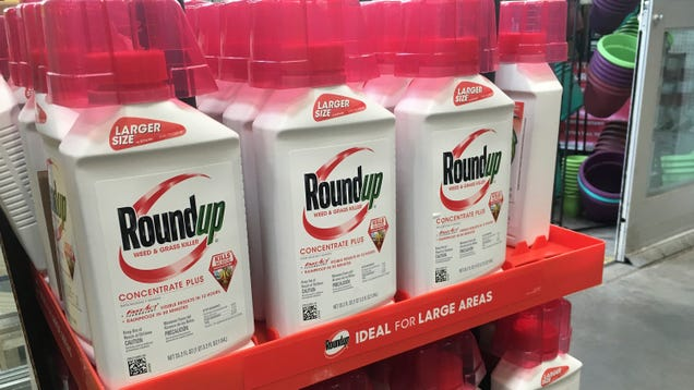 Monsanto Loses Roundup Cancer Trial to the Tune of $80 Million