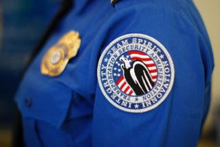 A TSA arm patch seen at Los Angeles International Airport in 2014David McNew/Getty Images