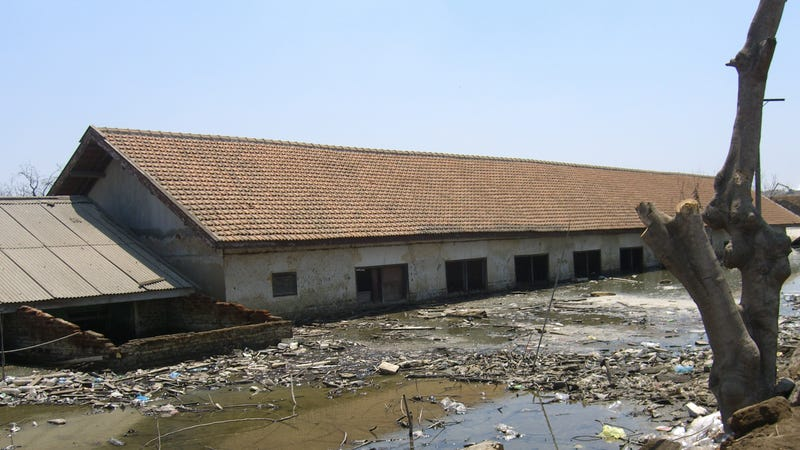 A school flooded by the mud (Image: Hugh e82/Wikimedia Commons)
