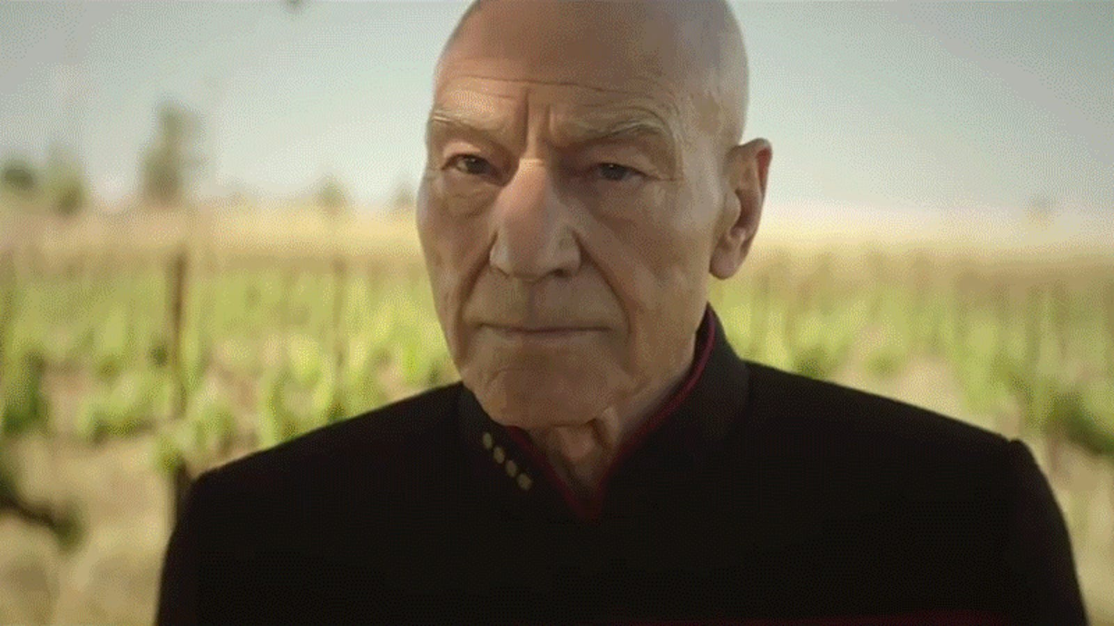 Breaking Down the Old Friends and New Secrets of Star Trek: Picard's Latest Trailer