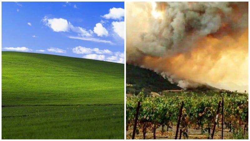 A la izquierda, la colina el famoso wallpaper de Windows XP (vía Microsoft). A la derecha, una colina incendiándose que no es la misma del fondo de pantalla del sistema operativo. (vía Kate Kisset/Twitter).