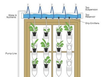 Turn a Sunny Window into a Hydroponic Garden