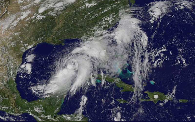 Tropical storm Hermine forming in the Gulf of Mexico yesterday. Image: NASA/NOAA