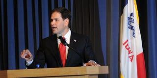 Sen. Marco Rubio (Steve Pope/Getty Images)