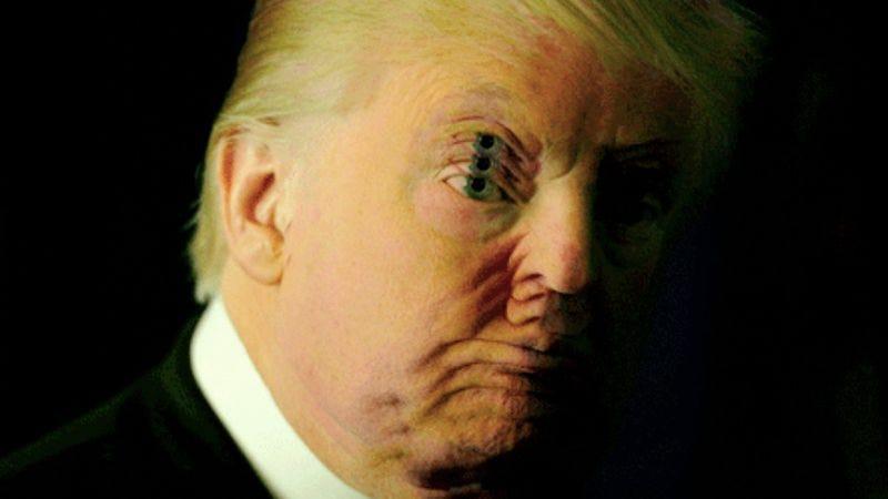 Screenshot: Doonaldjtrump.com