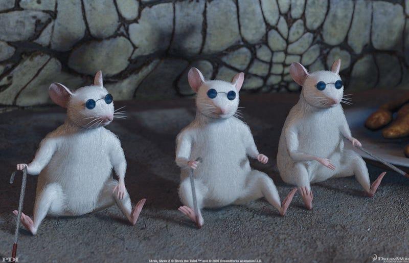 Illustration for article titled Light sensitivity temporarily restored in blind mice