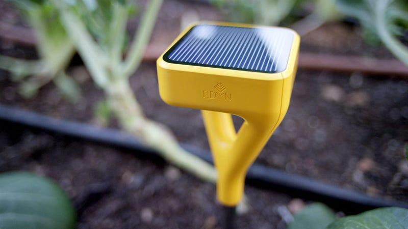 Illustration for article titled This Smart Monitor Will Help Brown Thumbs Raise Victory Gardens